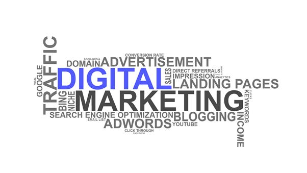 Marketing Digital para Leiloeiros